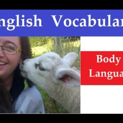 Body Language Vocabulary - IELTS, ielts listening, ielts speaking, ielts writing, IELTS-Test - Body Language Vocabulary
