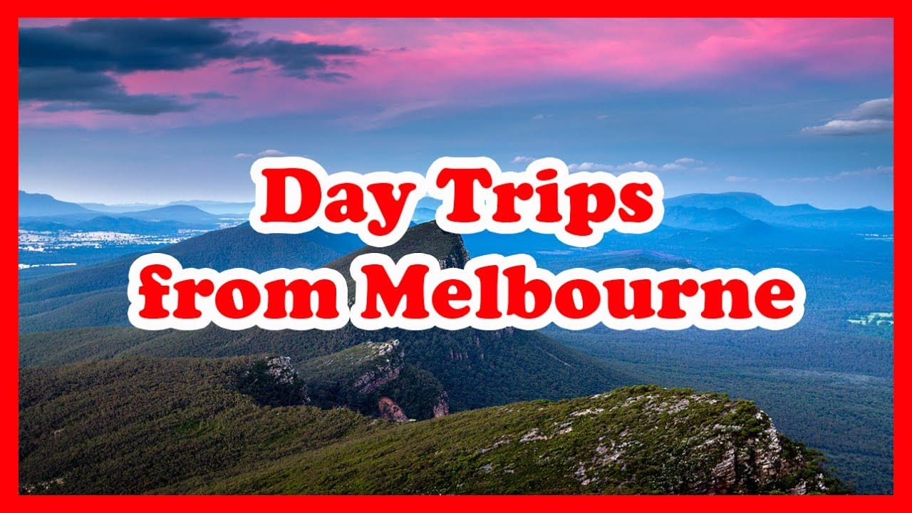 5 Top-Rated Day Trips From Melbourne, Victoria | Australia Day Tours Guide