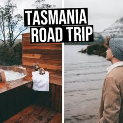 We Went on a Tasmania Road Trip | The Hidden Gem of Australia! - bruny island, cradle mountain, Cradle Mountain Lodge, daily travel vlog, flying the nest, heyitsjessvalentine, jess valentine, Peppers Cradle Mountain Lodge, port arthur, sparrystake, stephen parry, Tasmania Australia, tasmania road trip, Tasmania travel guide, tasmanian devil, tessellated pavement, travel australia, travel tasmania, travel vlog, wineglass bay - We Went on a Tasmania Road Trip The Hidden