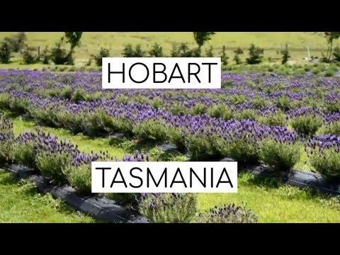 Travel Guide to Hobart, Tasmania - Tasmania Video Guides - Travel Guide to Hobart Tasmania
