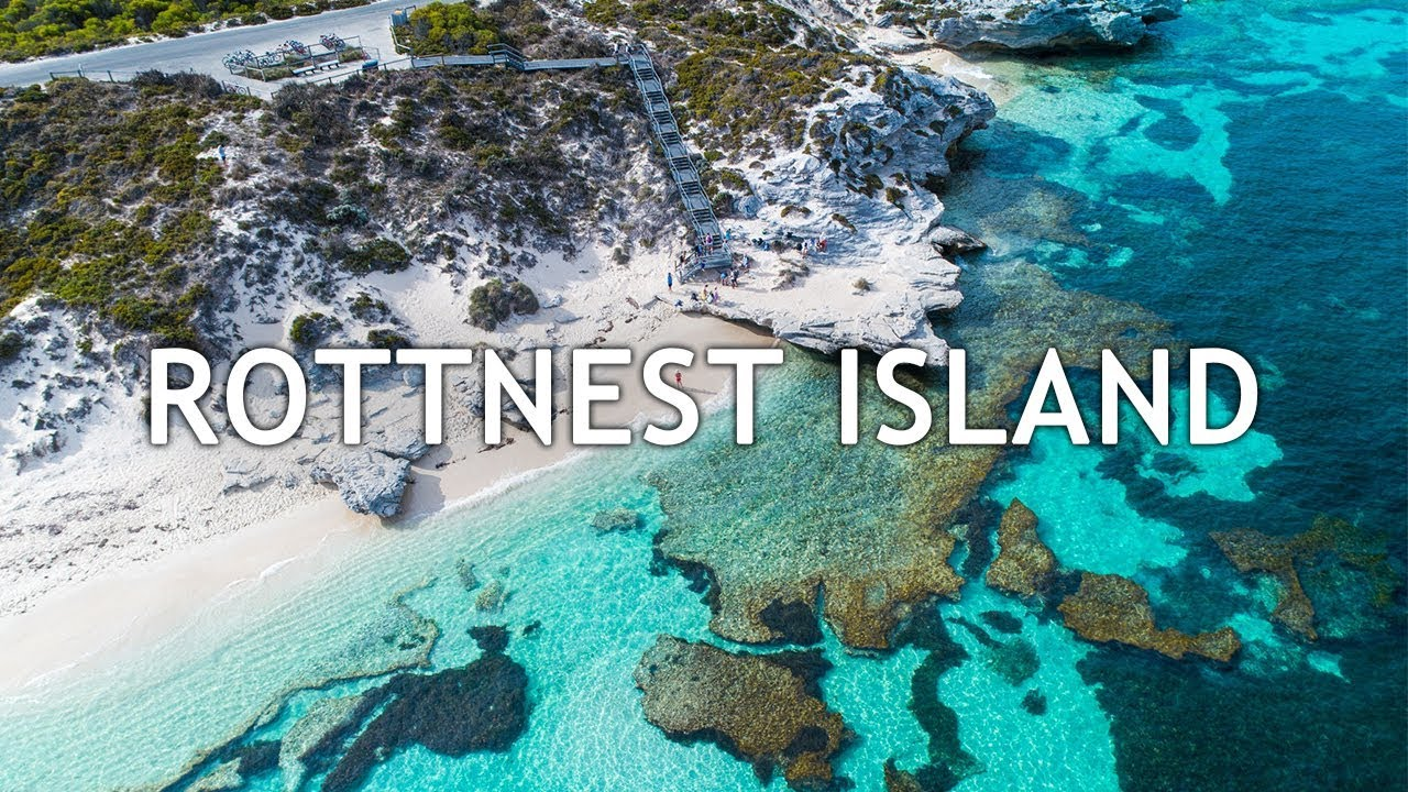 Paradise On Earth | A Day Trip In Rottnest Island | Perth