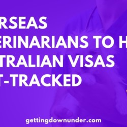 Overseas Veterinarians To Have Australian Visas Fast-Tracked